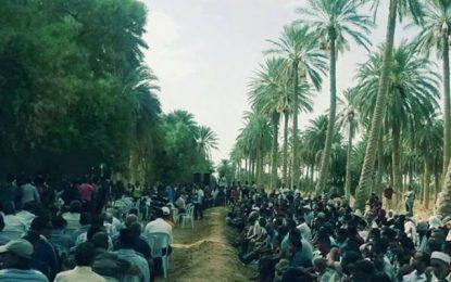 Affaire de Jemna : L'Etat tunisien ne va pas se laisser voler
