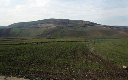 L'État récupère 11 ha de terres domaniales à Manouba