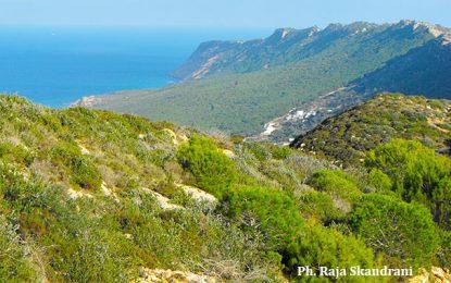 Bizerte : L'escalade du Djebel Nadhour