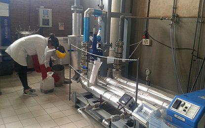 Découverte tunisienne : Les déchets oléicoles transformés en carburant vert