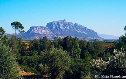 Balade à Djebel Ressas