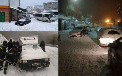 Froid et neige: Des ministres à Aïn Drahem pour constater les dégâts