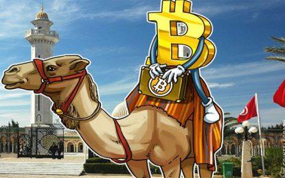 La valeur du bitcoin est 20% plus élevée en Tunisie qu'aux Etats-Unis