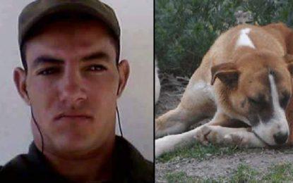 Kasserine : La chienne du martyr Ghozlani retrouvée égorgée