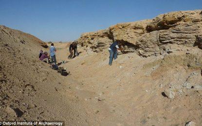 Archéologie: La Tunisie, «premier corridor humain» du continent africain