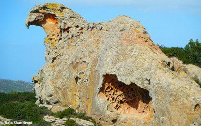 Cap Bon : Un piton rocheux appelé Bec de l'Aigle