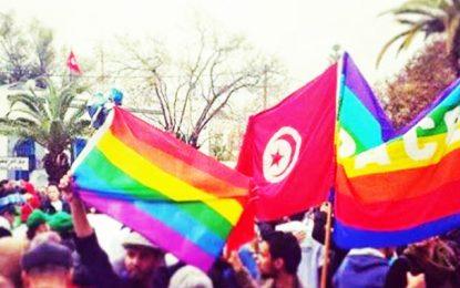 Persécution des homos : Shams porte plainte auprès de l'Onu