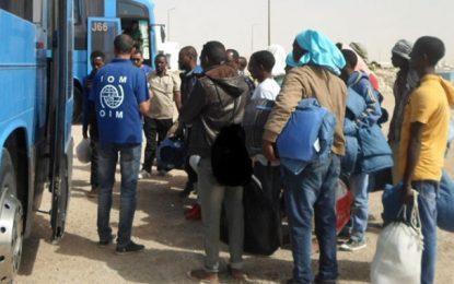 La Tunisie assiste des réfugiés africains fuyant la Libye