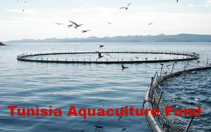 Tunisia Aquaculture Fund : Un fonds d'investissement dans l'aquaculture