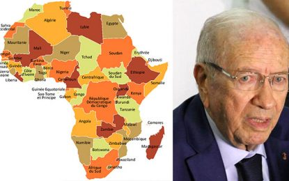 Pourquoi Caïd Essebsi snobe-t-il l'Afrique?