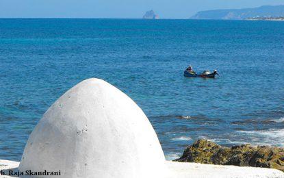 Cap Zebib Metline : Destination préférée amoureux de la nature
