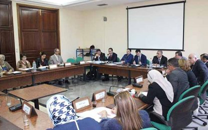 Affaiblissement des flux des Tunisiens partant pour le jihad