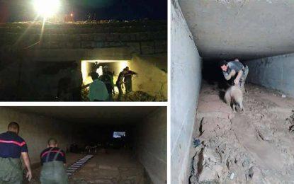 Borj Cédria : Un berger et ses moutons coincés dans un tunnel