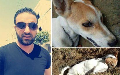 Intox: La vidéo du chien empoisonné n'a rien à voir avec la Tunisie