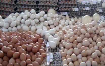 Sfax : Un million d'œufs pourris saisis à Mahrès