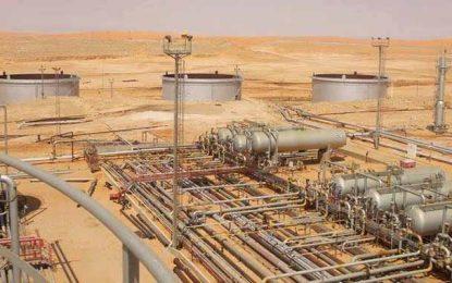 L' «avenir sombre» de l'approvisionnement énergétique en Tunisie