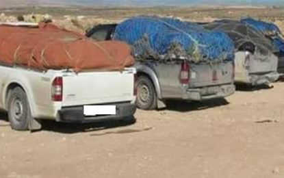Un contrebandier et ses 5 complices arrêtés au Kef