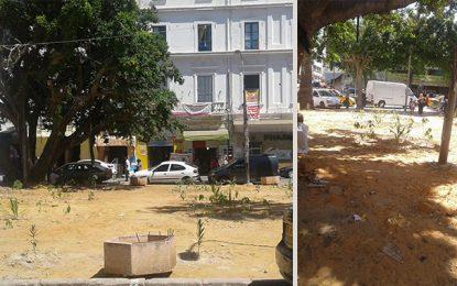 Boumendil et Al-Jazira : Un jardin public à la place des commerces interdits