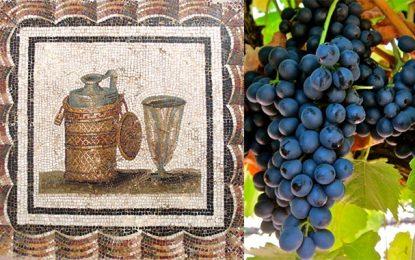 Colloque à Carthage : « Magon, le père de l'agronomie »