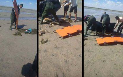 Gabès : Découverte du corps d'une femme sur une plage