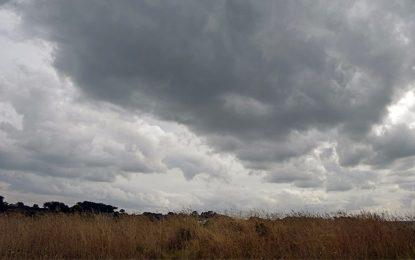 Méteo : Baisse des températures et pluies en perspectives
