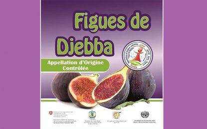 Béja : Journée de promotion de la figue de Djebba