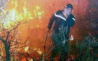 Incendies en Tunisie : Onze individus en détention