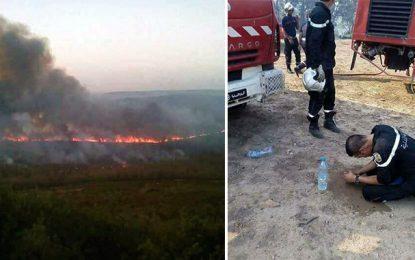 Incendies à Jendouba : Deux individus arrêtés