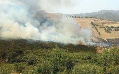 Quatre départs de feu dans les montagnes de Kasserine