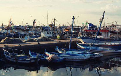 Tunisie : Près de 60.000 pêcheurs manifesteront ce mercredi