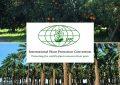 Atelier à Tunis : Protection des végétaux contre les insectes ravageurs
