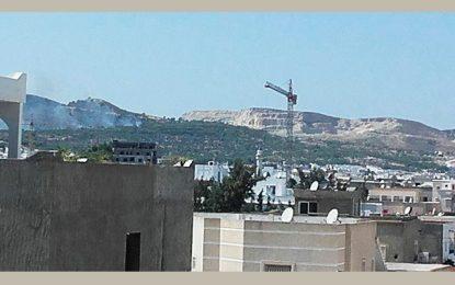 Ariana : Incendie à Jebel Jaafar