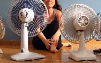 Consommation électrique : La Steg tire la sonnette d'alarme