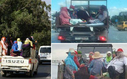 Vers l'amélioration des conditions de transport des ouvrières agricoles