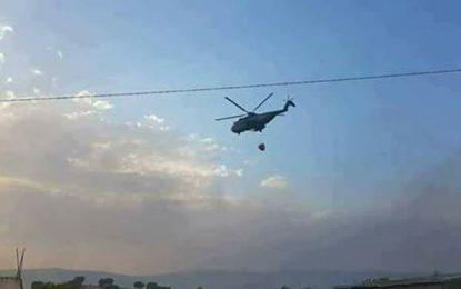 Siliana : L'armée nationale intervient pour maîtriser l'incendie
