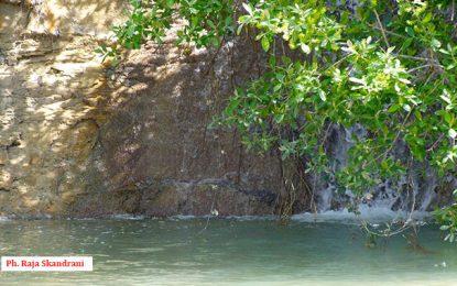 Ain Chbour -Zaghouan : Sur le chemin des eaux