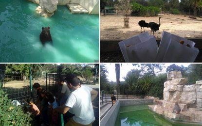 Zoo du Belvédère : Pas touche !