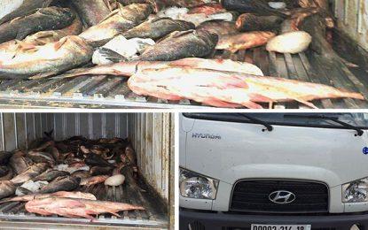 Hammamet : Saisie de 1,4 tonne de poisson avarié