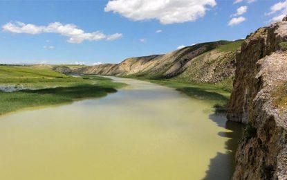 Environnement : La Medjerda s'expose à Hammamet