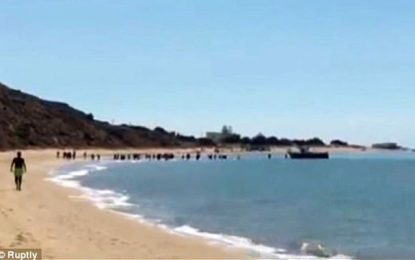 Tunisie-Italie : « El Harga » reprend de plus belle