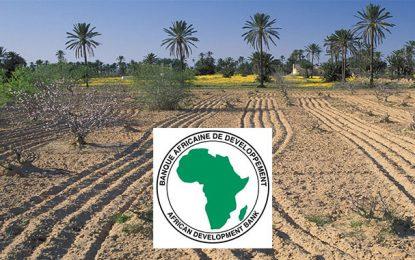 BAD : Prêts de 38,6 M€ pour l'agriculture tunisienne