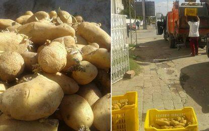 Bardo : Saisie d'une tonne de pommes de terre avariée
