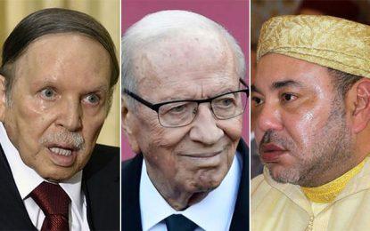 Le Maghreb et le naufrage de ses dirigeants