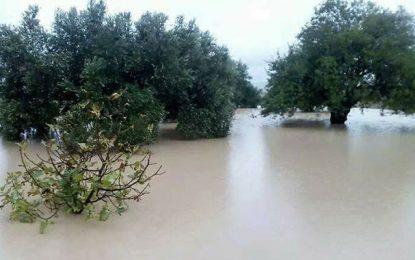 Inondations à Gabès: Chahed appelle à mobiliser tous les moyens publics