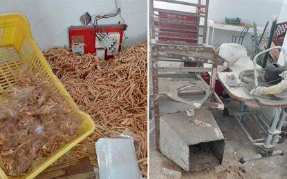 Sfax : Saisie de 2 tonnes de kaki destiné aux enfants