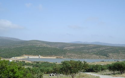 Disparition de 2 pêcheurs au barrage de Sejnane