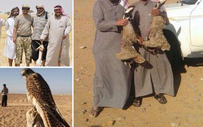 Des émirs braconniers dans le désert tunisien