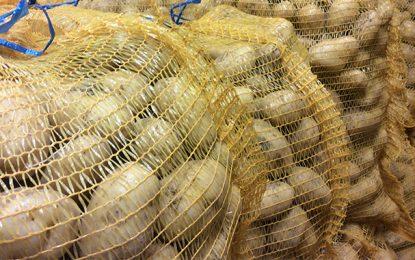 Sidi Bouzid : Saisie de 50 tonnes de pommes de terre