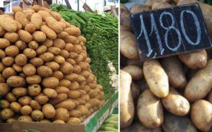 Tunisie : Le kilo de pommes de terre à 1.180 dinars