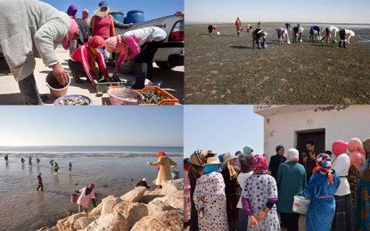 Commerce équitable dans le secteur des palourdes en Tunisie